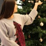Der Weihnachtspullover